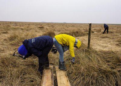 Freiwillige im Einsatz