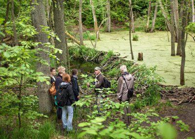 Führung zum Biberdamm (Foto: S. Heise)